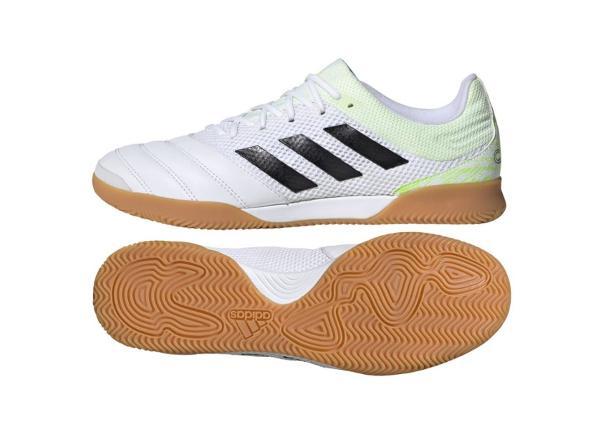 Meeste saali jalgpallijalatsid Adidas Copa 20.3 IN Sala M G28547