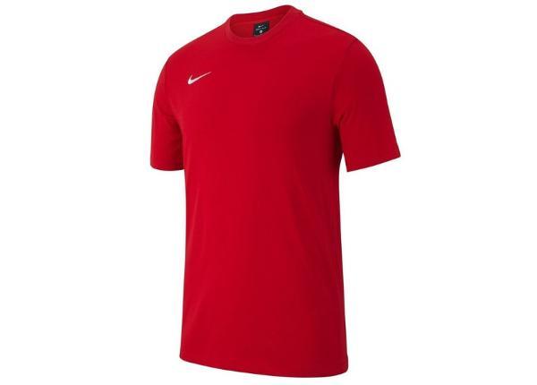 Laste jalgpallisärk Nike Y Tee Team Club 19 SS Jr AJ1548 657