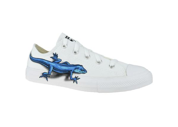 Laste tennised Converse Lizards Chuck Taylor All Star Low Kids