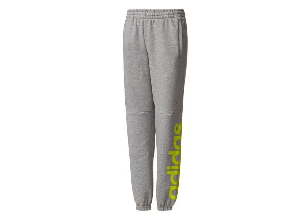 Laste dressipüksid Adidas Essentials Linear Pants Junior CE8825