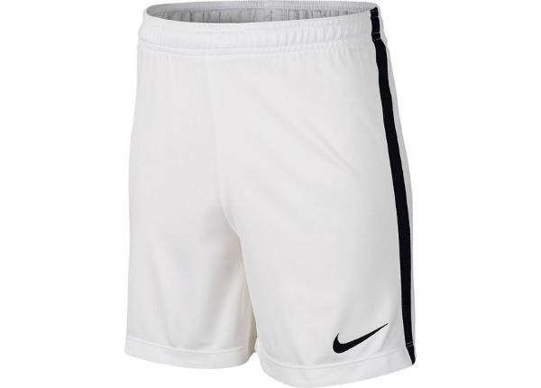 Miesten jalkapalloshortsit Nike Dry Academy Short M 832901 101