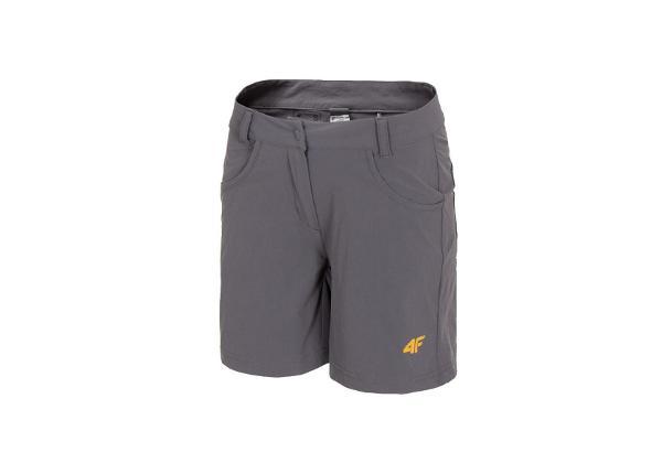 Женские шорты 4F Women's Functional Shorts W H4L20-SKDF060-23S