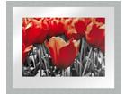 Картина Modern - Красные тюльпаны