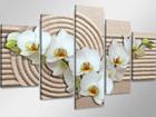Viieosaline seinapilt Valge orhidee liival