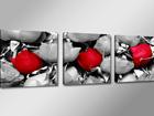 Kolmeosaline seinapilt Roos
