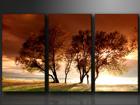 Kolmeosaline seinapilt Puud