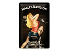 Retro metallijuliste Harley-Davidson Baker Babe 20x30cm SG-68154