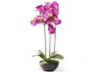 Koristekasvi vaaleanpunainen vaaleanpunainen Orkidea 72 cm EV-69042