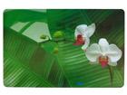 Serveerimisalused Orhidee 4tk