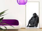 Fototapeet Gorilla Thought 100x210cm ED-76684