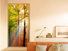 Fototapeet Forest Lights 100x210cm