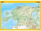 Regio Eesti üldgeograafiline seinakaart 99x70 cm
