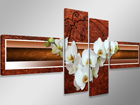 Neljaosaline seinapilt Orhidee 160x70 cm