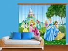 Fotokardin Disney Princess 280x245 cm
