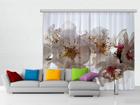 Poolpimendav fotokardin Flowers 280x245 cm ED-87353