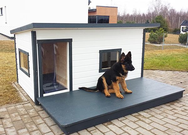 Lämpöeristetty koirankoppi terassilla Boss 4