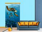 Poolpimendav fotokardin Disney Finding Nemo 140x245 cm