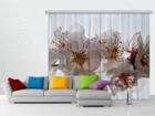 Pimendav fotokardin Flowers 280x245 cm