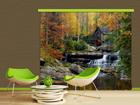 Pimendav fotokardin Watermill in autumn 280x245 cm