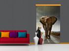 Pimentävä fotoverho ELEPHANT I, 140x245 cm ED-87861