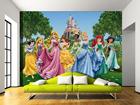 Fototapeet Disney Princess 360x254 cm ED-88014