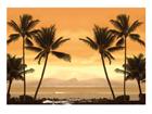 Fototapeet Caribbean beach 400x280 cm