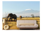 Fototapeet Kilimanjaro elephants 400x280 cm ED-88112