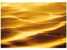 Фотообои Golden dunes 400x280 см
