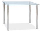 Ruokapöytä TED 100x60 cm WS-88802
