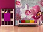 Fliis-fototapeet Pink orchids 360x270 cm