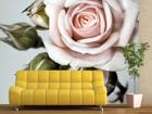 Fliis-fototapeet Roses 360x270 cm ED-90694