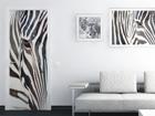 Флизелиновые фотообои Zebra 90x202 см