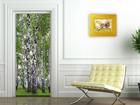 Fliis-fototapeet Birch grove 90x202 cm