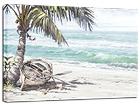Pilt Palm 60x80 cm