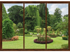 Fliis-fototapeet Japanese garden 360x270 cm ED-94823