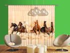 Fotokardin Herd of horses 280x245 cm ED-95864