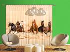 Pimendav fotokardin Herd of horses 280x245 cm