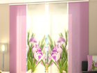 Läpinäkyvä paneeliverho CROCUSES 240x240 cm