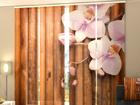 Läbipaistev paneelkardin Dry Bamboo 240x240 cm