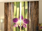 Läbipaistev paneelkardin Four Shoots of Bamboo 240x240 cm