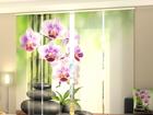 Läpinäkyvä paneeliverho ORCHIDS AND STONES 240x240 cm