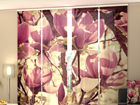 Läbipaistev paneelkardin Pink Magnolias 240x240 cm