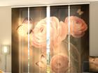 Läbipaistev paneelkardin Silence 240x240 cm