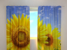 Pimennysverho FLOWERS ON THE SUN 240x220 cm ED-97958