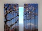 Полузатемняющая штора Fuji 240x220 cm ED-97990