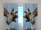 Läbipaistev kardin Giraff 240x220 cm ED-98018