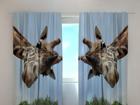 Полузатемняющая штора Giraff 240x220 cm ED-98019