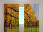 Läbipaistev kardin Golden autumn 240x220 cm