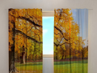 Полузатемняющая штора Golden autumn 240x220 cm ED-98054
