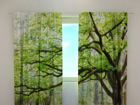 Pimendav kardin Green tree 240x220 cm ED-98151